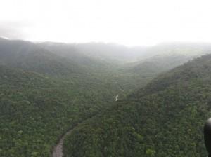 Helikoperrundflug - Mossman Nationalpark, Regenwald und Mossman River