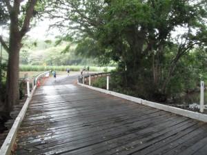 Great Barrier Reef Marathon Wochenende - Ab Kilometer 8 war überwiegend Straße zu laufen