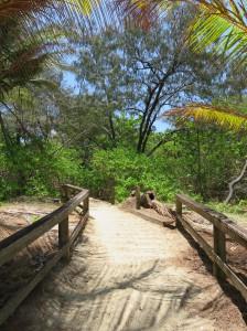 "Port Douglas - Das ""Hinterland"" des Four Mile Beach"
