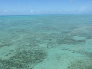 Helikoperrundflug -  Great Barrier Reef, die Riffe