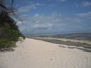 Green Island - Strand