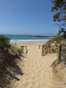 Great Ocean Road - Strand in Apollo Bay