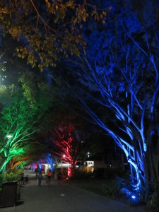 Cairns - Parkbeleuchtung in Cairns