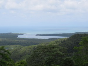 Alexandra Lookout - Ausblick auf Regenwald und Meer