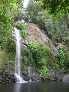 Cassowary Falls