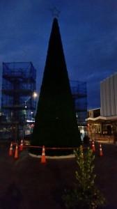 """Rotorua - Heute wurde der Weihnachtsbaum aufgestellt... was fällt mir dazu ein: """"Früher war mehr Lametta!"""" :-)  :-)  :-)  ..."""