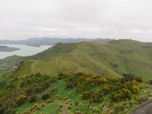 Christchurch - Ausflug mit der Seilbahn, Aussicht