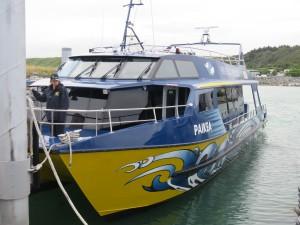 Kaikoura -Boot zur Waltour