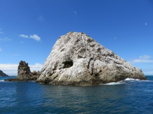 Robben-Felsen