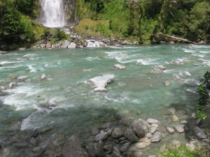 Fahrt von Fox Glacier nach Queenstown - Thunder Creek Falls