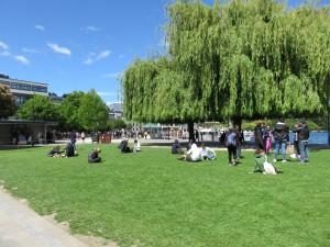 Queenstown - Uferpromenade