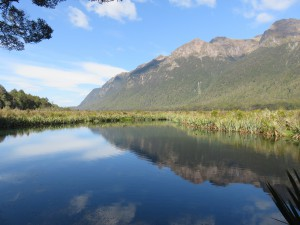 Ausflug nach Milford Sounds - Mirror Lakes