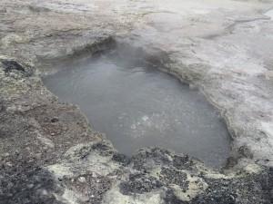 Rotorua - Die Rotorua Thermal Quellen, brodelndes Wasser