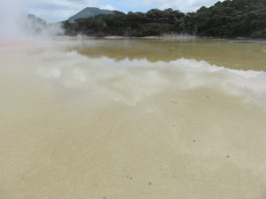 Wai-O-Tapu - Rundgang durch das Thermal Wonderland