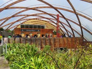 Fahrt von Rotorua nach Auckland - Besichtigung Waitomo Glowworm Caves, Besucherzentrum