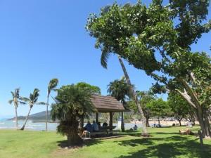 Airlie Beach: Der Strand