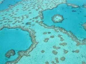 Whitsunday Rundflug: Die Korallenriffe Heart Reef und Hardy Reef