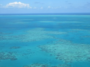Rundflug über Cairns, Riffe und Port Douglas