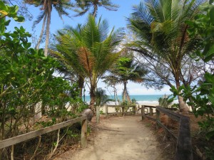 Port Douglas: Zugang zum Four Mile Beach